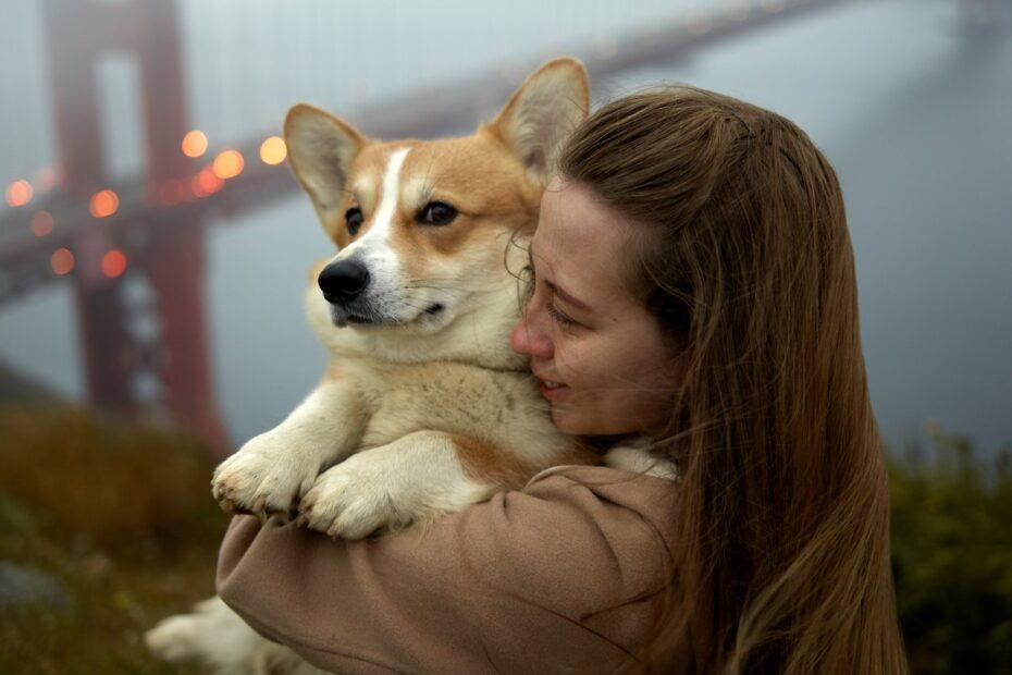 Hunden som fritidsaktivitete